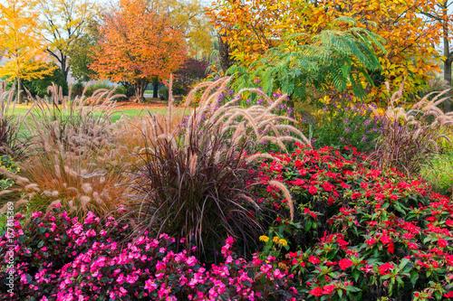 A piece of garden in autumn