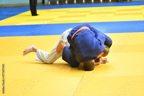 Two judoka on the tatami Poster