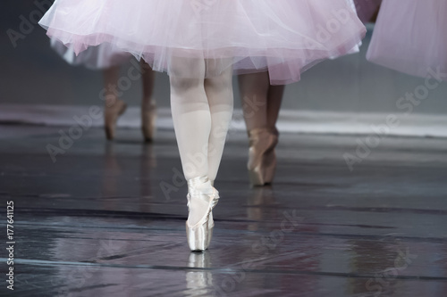 Ballet dancer en pointe Poster