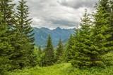 Scenic Tatra Mountains Place
