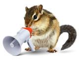 Funny animal chipmunk talking into megaphone - 177682507