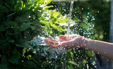 Water pouring in woman hand on nature background, environment issues - 177717528