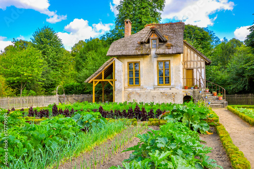 Fotobehang Nice European rustic landscape, an old French house with a large garden.