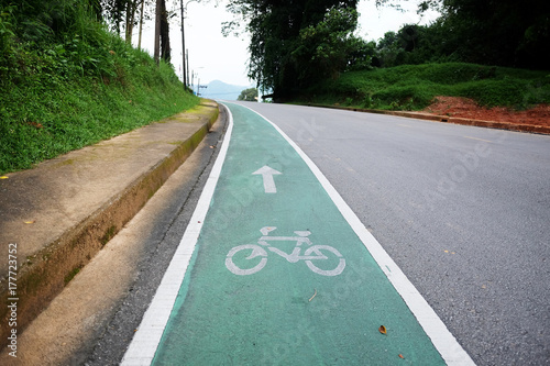 Bicycle path. Bicycle symbol on the street Poster