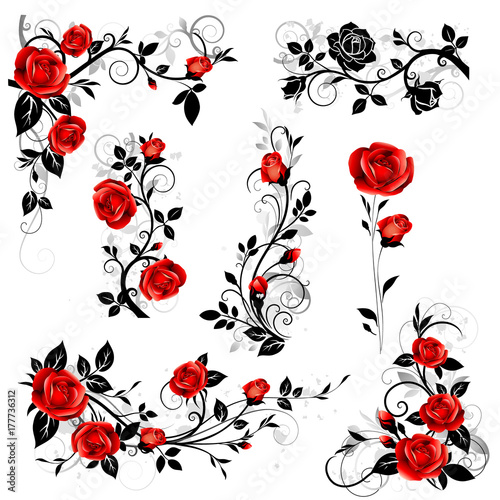 Vector set of decorative calligraphic design elements with red vintage rose and black leaves for border and frame decor. - 177736312