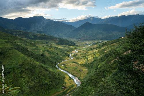 Fotobehang Groen blauw Terraced rice field in harvest season in Mu Cang Chai, Vietnam.