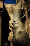 Ancient Egyptian statue depicting Horus
