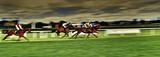 Pferderennen Gallopprennen - 177762926