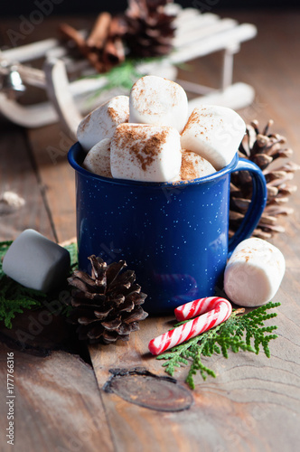 Foto op Canvas Chocolade Hot chocolate and marshmallow, Christmas holiday drink, selective focus, toned image