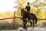 Young pretty girl riding a horse with backlit leaves behind - 177778317