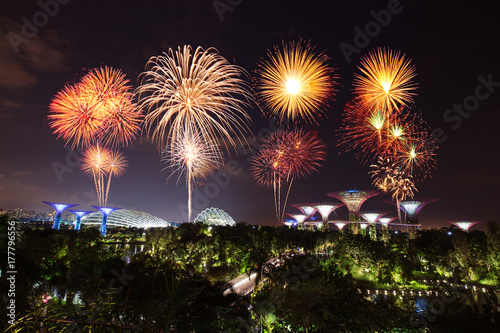 beautiful firework over Gardens by the bay at night, Singapore Poster
