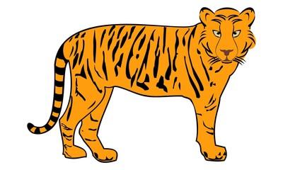 tiger image turned © mbarep