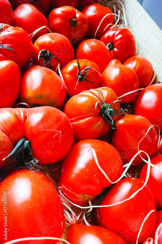 Ancient Provencal french tomatoes on the street market Poster