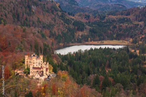 Fotobehang Diepbruine Hohenschwangau castle