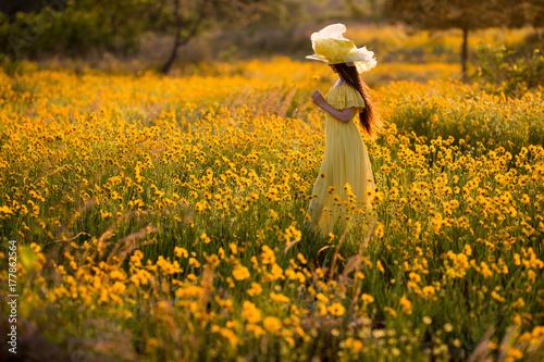 黄色いドレス Poster