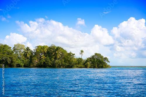 Foto op Canvas Caraïben Laguna de Bacalar Lagoon in Mayan Mexico