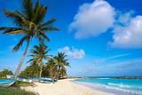 Chen Rio beach Cozumel island in Mexico - 177883172