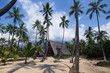 A typical Hawaiian hut surrounded by palm trees