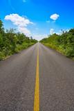 Riviera Maya jungle rainforest road - 177890353
