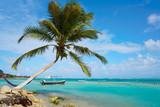 Mahahual Caribbean beach in Costa Maya - 177890520