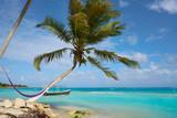 Mahahual Caribbean beach in Costa Maya - 177890521