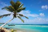Mahahual Caribbean beach in Costa Maya - 177890583