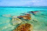 Mahahual Caribbean beach in Costa Maya - 177891157