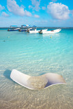 Mahahual Caribbean beach in Costa Maya - 177891580