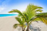 Riviera Maya Caribbean beach turquoise Mexico - 177912502