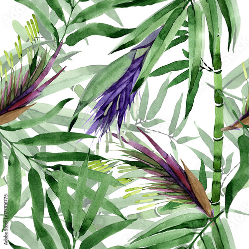 Tropical leaves bamboo tree pattern in a watercolor style. Aquarelle wild leaves for background, texture, wrapper pattern, frame or border. - 177916775