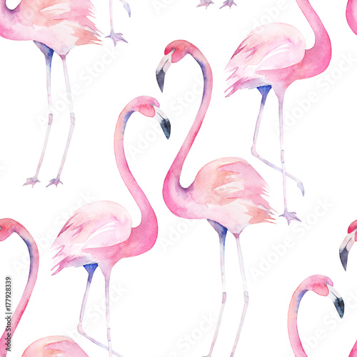 Watercolor seamless pattern with exotic flamingo. Summer decoration print for wrapping, wallpaper, fabric. Hand drawn illustration - 177928339