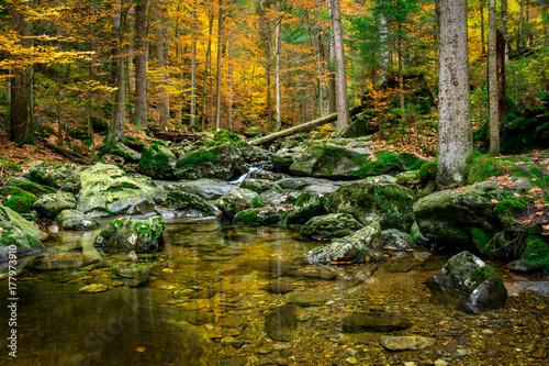 Papiers peints Rivière de la forêt Fluss bei den Risslochwasserfällen im Bayerischen Wald im Herbst
