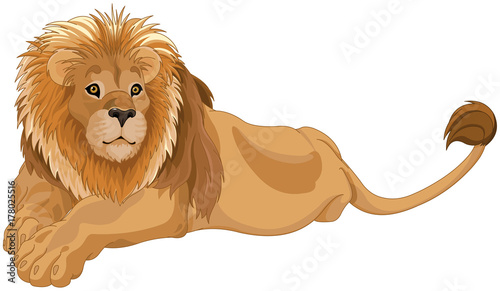 Papiers peints Magie Lion