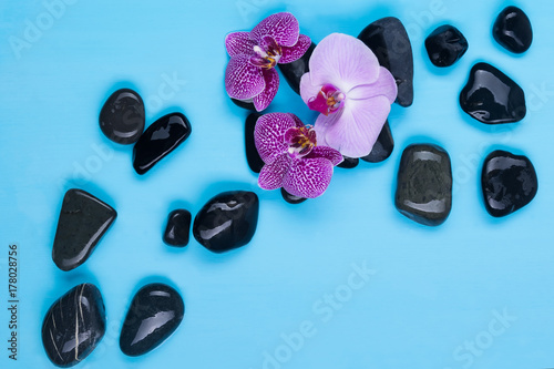 Fotobehang Spa black stones and flowers for massage and procedures in a spa salon on a blue background