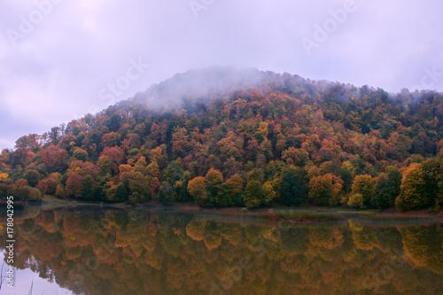 Keuken foto achterwand Purper Autumn landscape with colorful forest