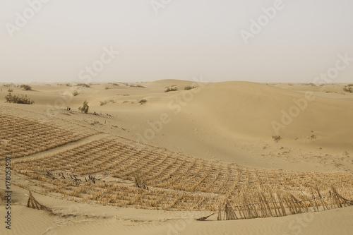 Taklamakan desert, china Poster