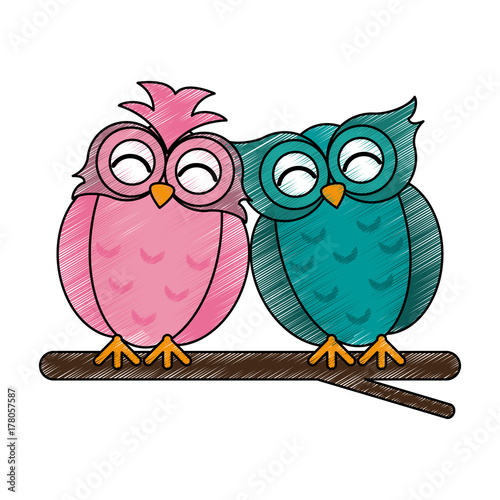 Aluminium Uilen cartoon lovebirds owls icon image vector illustration design