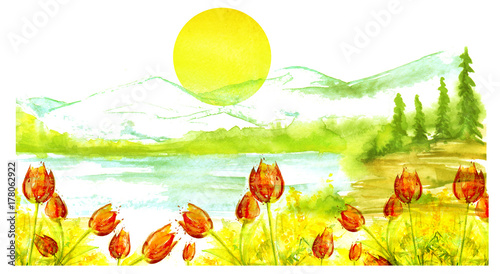 Fotobehang Geel Watercolor landscape, mountain landscape, silhouette of forest,river, trees, pine, spruce. Red tulips, mimosa, wild flowers and grass, flowering meadow. The round yellow sun. Art illustration