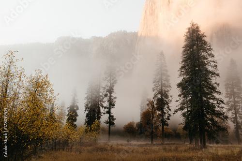 Misty Evening - 178092514