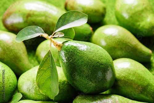 Closeup view of fresh green avocado at market
