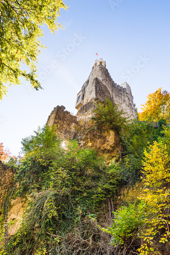 """wide angle view of castle """"Grimmenstein"""" in lower austria Poster"""