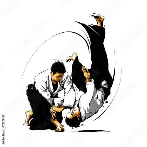 accion-de-aikido-1