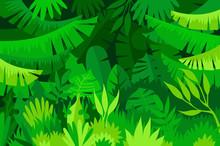 Tropical Forest Jungle Landscape Sticker