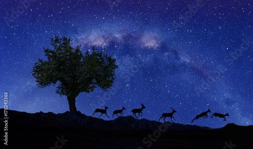 Fotobehang Zwart paisaje nocturno de las montañas