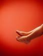 Leinwanddruck Bild - Babyfuesse mit textraum in Rot