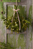Christmas mistletoe plant with berries tied in a bunch with a white and red bow.  - 178259165