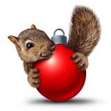 Christmas Cute Squirrel - 178278381