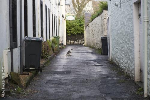 Poster Smal steegje Street in Dunbar Scotland