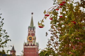 view of the Kremlin from the Park Zaryadye, Moscow