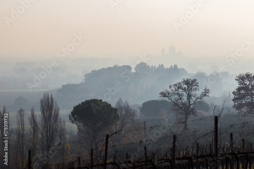 Various layers of vineyards, plants and tree in the middle of mist, with the  Santa Maria degli Angeli church in the background - 178319732